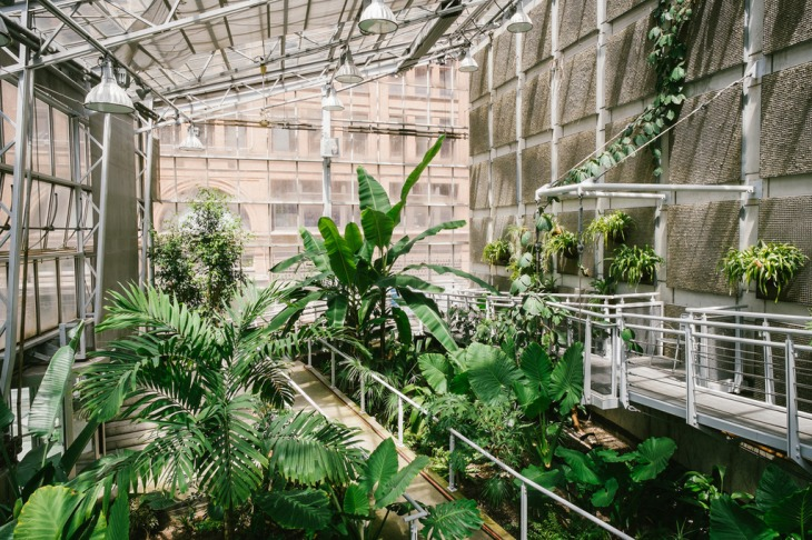 Cloud-Gardens-Conservatory-Tropical-Greenhouse